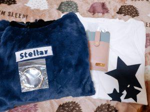 ステラワースの2021-福袋1
